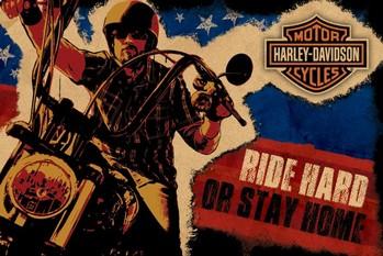 Harley Davidson - ride hard Plakat