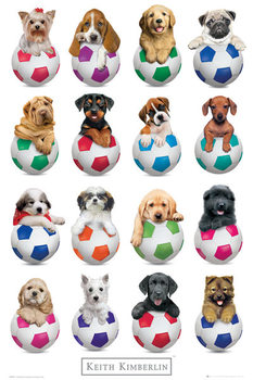 Keith Kimberlin - Puppies Footballs Plakat