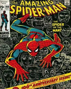 MARVEL - spider-man cover Plakat