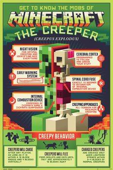 Plakat Minecraft - Creepy Behaviour