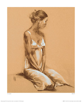 T. Good - Silk IV Kunsttryk