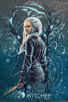 Plakat The Witcher - Ciri the Swallow