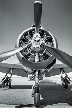 Vliegtuig - Propeller Plakat