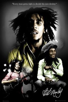 Bob Marley - destiny Plakat