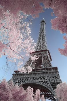 Paris - Eiffel Tower, David Clapp Plakat