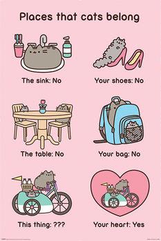 Pusheen - Places Cats Belong Poster