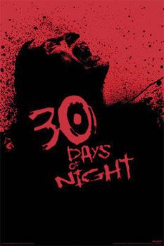 A SÖTÉTSÉG 30 NAPJA - screaming zombie plakát