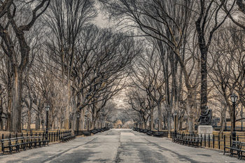 Assaf Frank - New York Central Park Plakát