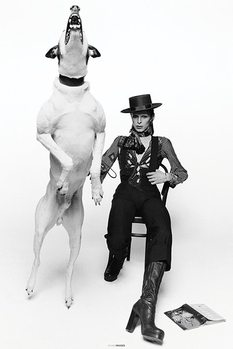 David Bowie - Diamond Dogs Plakát