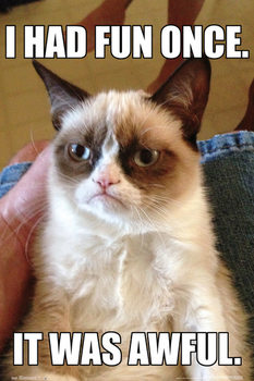 Grumpy cat Plakát