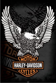 Harley Davidson - eagle Plakát