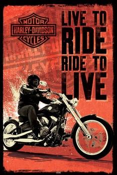 Harley Davidson - live to ride Plakát