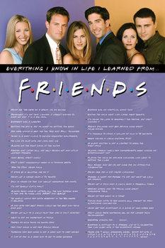Plakát Jóbarátok - Everything I Know