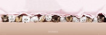 Keith Kimberlin - kittens Plakát