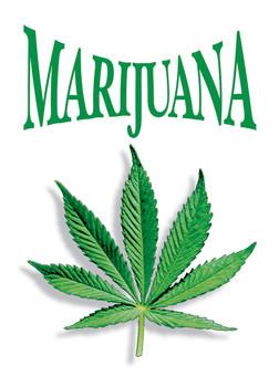 Marijuana leaf Plakát