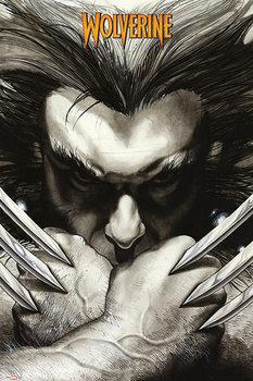 Marvel Comics - Wolverine claws Plakát