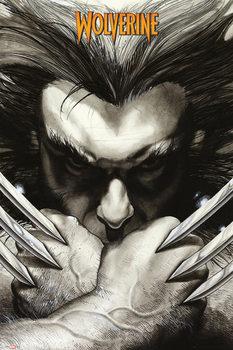 MARVEL EXTREME - farkas - claws Plakát
