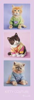 Rachael Hale - kitty couture Plakát