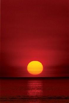 Sunset Plakát