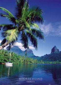 Tahiti - moorea island Plakát