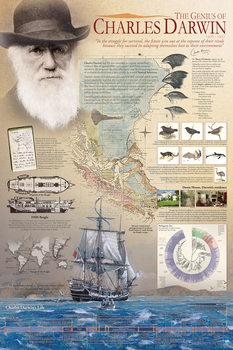 The genius of Charles Darwin Plakát