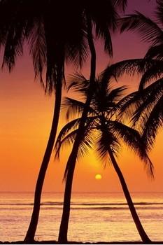 Tropical Sunset Plakát