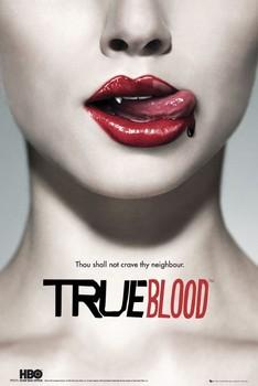 TRUE BLOOD - teaser Plakát