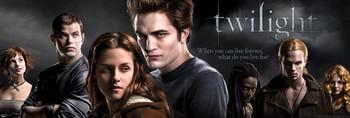 TWILIGHT - movie poster Plakát