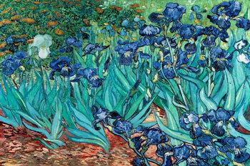 Plakát Vincent van Gogh - Les Irises