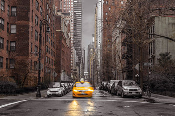 Plakat Assaf Frank - New York Taxi