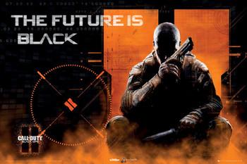 Plakát Call of Duty Black Ops II - landscape