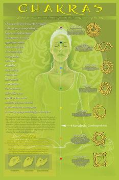 Chakras and mudras  plakát, obraz
