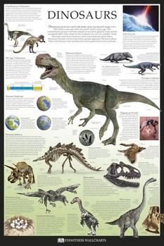 Plakát Dinosaurs