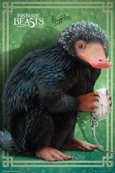 Plakát  Fantastická zvířata a kde je najít - Niffler