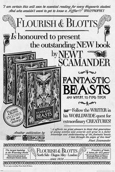 Plakát Fantastická zvířata: Grindelwaldovy zločiny - Flourish And Blotts