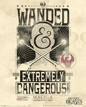 Plakat Fantastyczne zwierzęta i jak je znaleźć - Extremely Dangerous