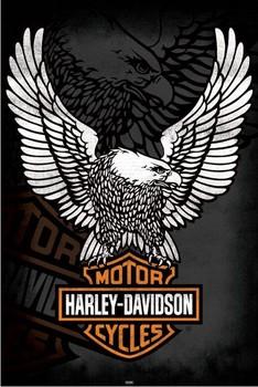 Plakát Harley Davidson - eagle