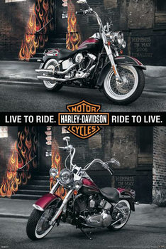 Plakát Harley Davidson - memphis