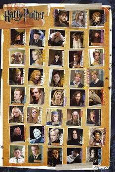 HARRY POTTER 7 - characters plakát, obraz