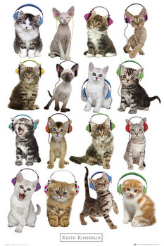Plakát  Keith Kimberlin - kittens headphones
