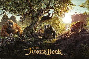 Plakat Księga dżungli - Panorama