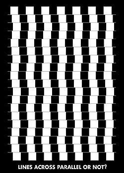 Plakát Lines across parallel or nor?