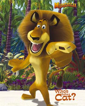 Plakát MADAGASCAR - alex