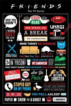 Plakát PŘÁTELÉ - FRIENDS - infographic