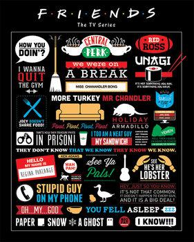 Plakát Přátelé - Infographic