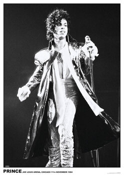 Plakát Prince - Joe Louis Arena, Chichago