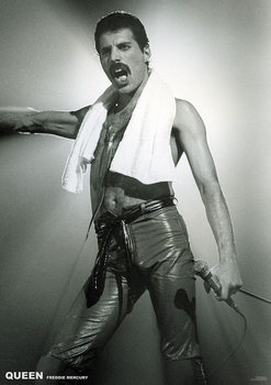 Plakat Queen - Freddy Mercury