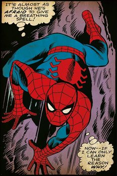 Spider-Man - Breathing Spell plakát, obraz