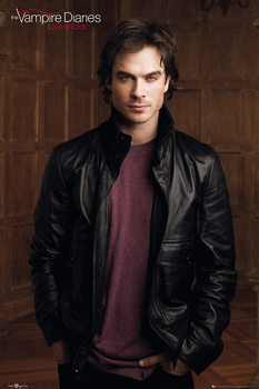 THE VAMPIRE DIARIES - damon plakát, obraz