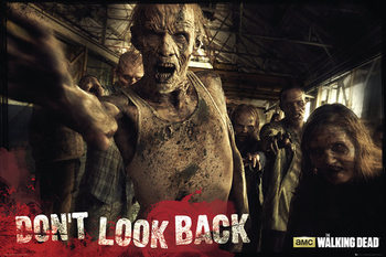 Plakát  The Walking Dead - Zombies